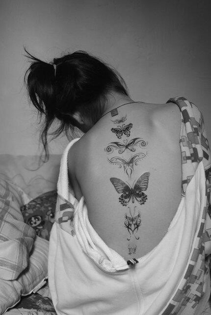 Image Result For Life Cycle Of Butterfly Sketch