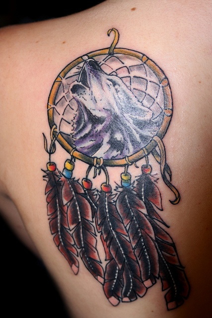 dreamcatcher tattoo and wolf design of tattoosdesign of