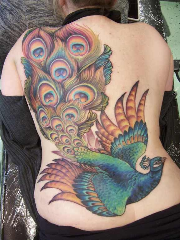 Red peacock tattoo - photo#20