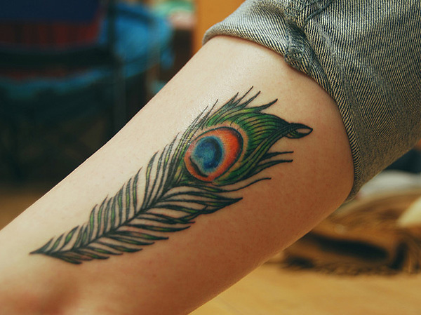 colorful design of a peacock feather tattoo
