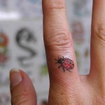 tiny ladybug tattoo design