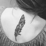 owl feather tattoo design