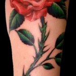 awesome red rose tattoo design