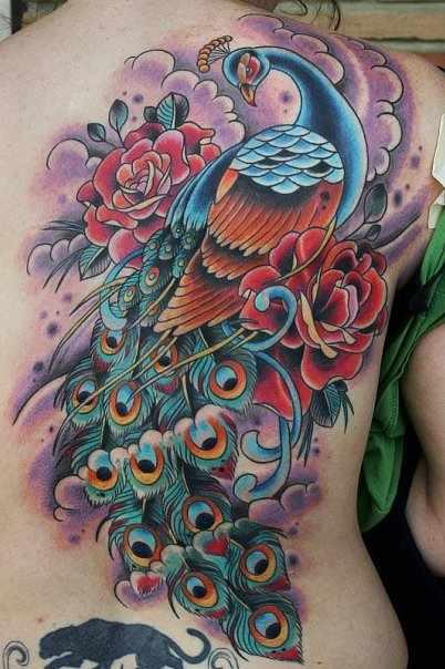 Traditional fullback peacock tattoo design design of for Traditional peacock tattoo