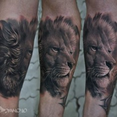 AD Pancho lion tattoo