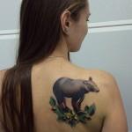 bear tattoo design by sasha unisex