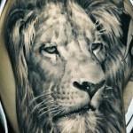Sergio Sanchez realistic lion tattoo