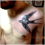 black realistic swallow tattoo