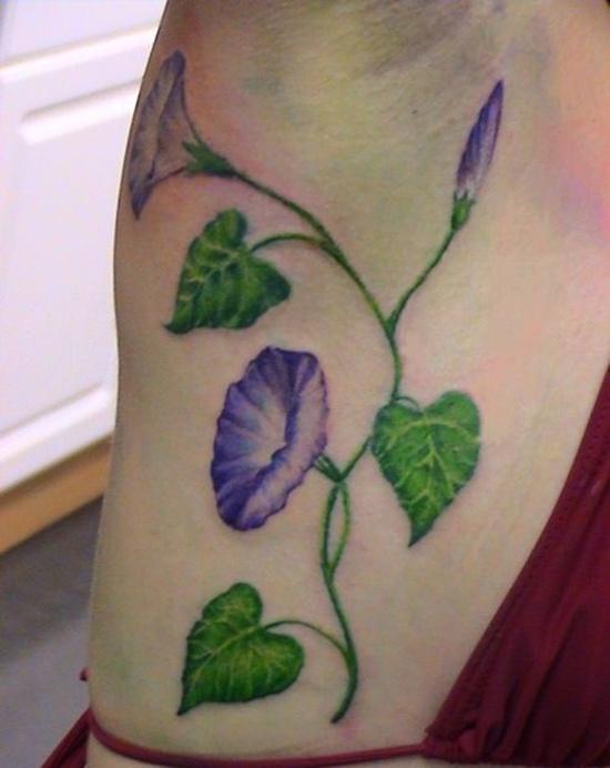 morning glory tattoo design design of tattoosdesign of tattoos rh designoftattoos com Wild Morning Glory Morning Glory Tattoo Designs for Women