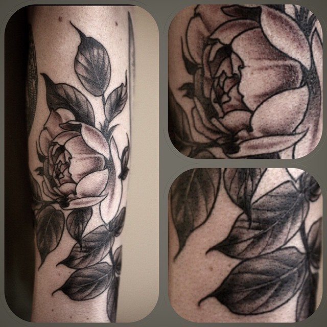 Alice Kendall elegant rose tattoo