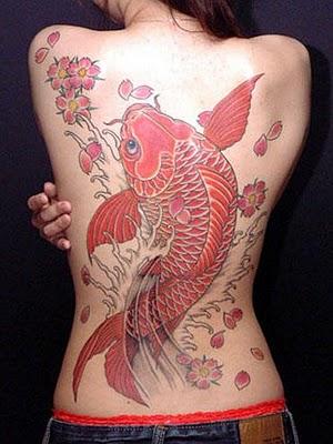 Koi fish in red tattoo