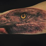 Arm Eagle Tattoo by Mike DeVries