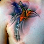 hummingbird tatto chest