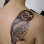 Owl tattoo on upper back