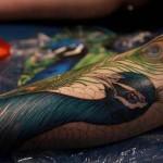 detailed peacock tattoo