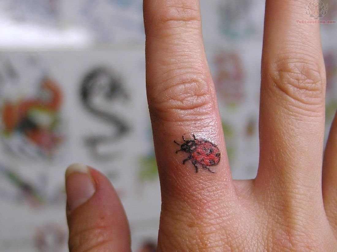 tiny ladybug tattoo design