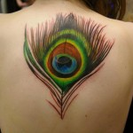 back peacock feather tattoo design