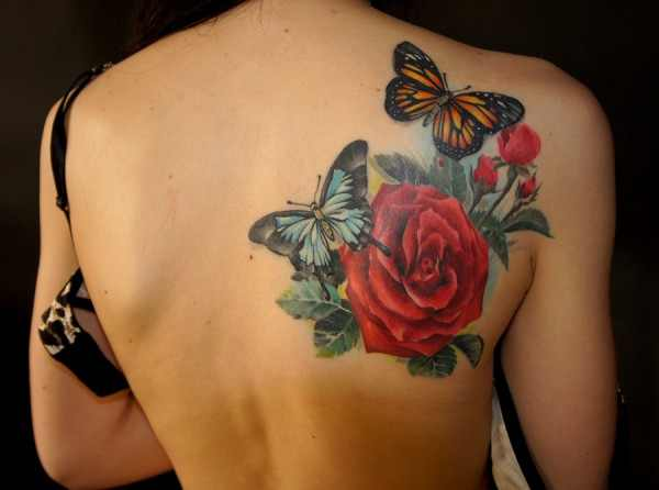 butterfly and rose tattoo design