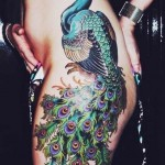 sexy peacock tattoo
