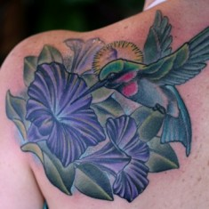 hummingbird and morning glory tattoo