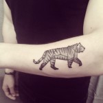 Ana Work tiger tattoo design