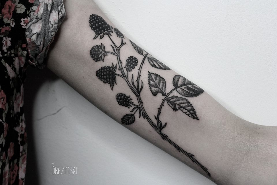 Ilya Brezinski redberry tattoo design